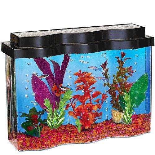 Best 25 unique fish tanks ideas on pinterest fish tanks for Unique fish tank