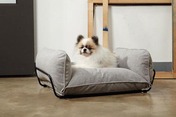 Коллекция дизайнерских диванов и лежаков для собак от HOWLPOT.