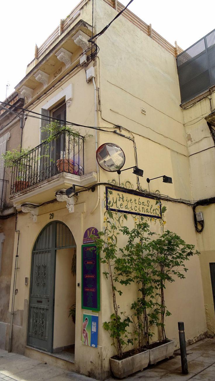 https://flic.kr/p/ut95ah | Herbes medicinals al carrer d'Horta. Barcelona, Catalonia