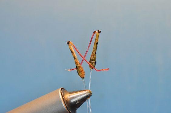 Hopper Legs- by Fred Hannie | | Hatches Fly Tying Magazine