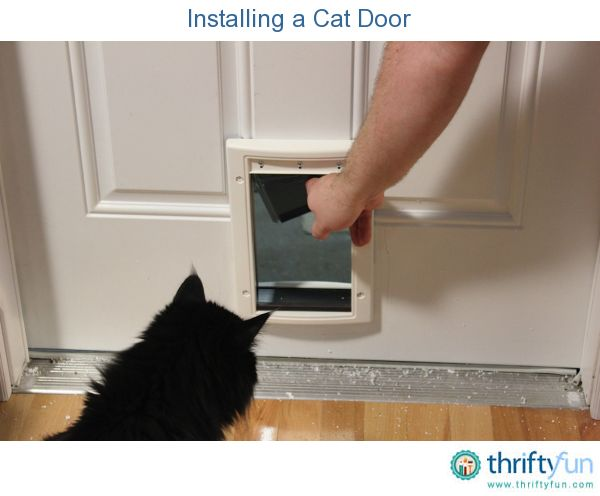 Installing a cat door is an easy home improvement project.  They can be installed in just about any door in your house or even through the wall.