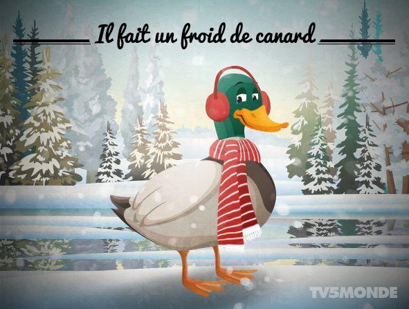 Expressions françaises - Un très grand froid, un froid très vif .