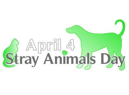Η Παγκόσμια Ημέρα Αδεσπότων Ζώων καθιερώθηκε με πρωτοβουλία των ολλανδικών φιλοζωικών οργανώσεων το 2010 για την ευαισθητοποίηση της διεθνούς κοινότητας σχετικά με την τύχη των 600...