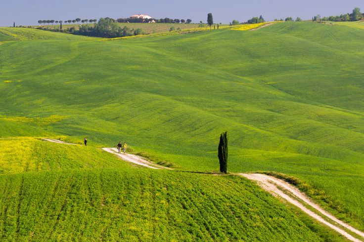 Tuscany, spring 2015 by Roman Rogner on 500px
