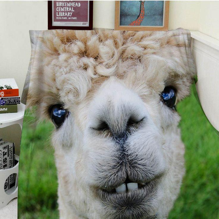 Best 25 Alpaca Funny Ideas On Pinterest Funny Llama