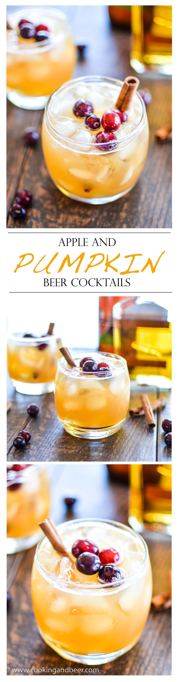 Apple and Pumpkin Beer Cocktail recipe. Try something a little different at your next Fall party!