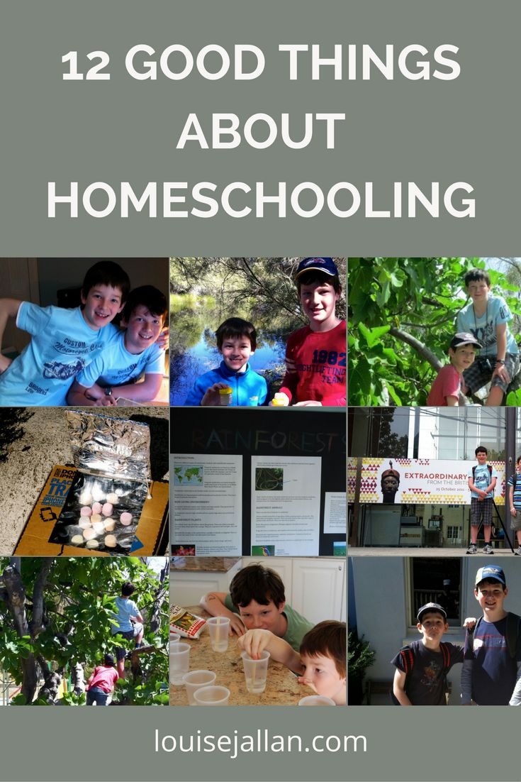 I didn't think I'd be able to homeschool. It seemed too frightening, too huge a responsibility. What if I taught the wrong facts? What if I omitted a vital part of the curriculum? Plus, I hadn't qu…