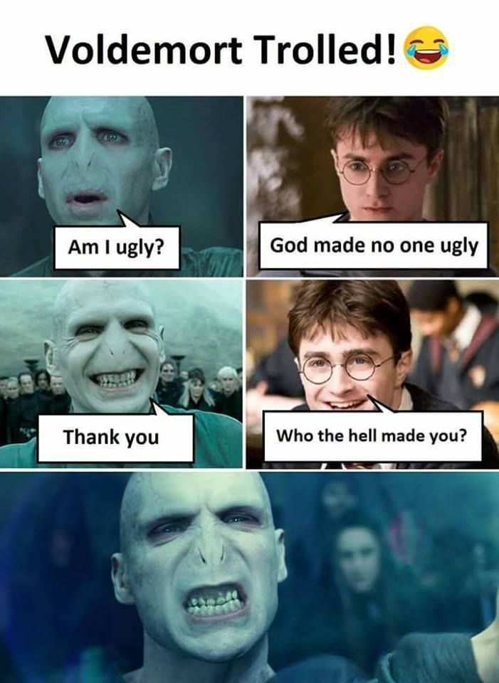 20 Funniest Memes Harry Potter Funnymemes Harrypottermemes Voldemortmemes Funnyvoldemortmemes Funnyharr Funny Memes Harry Potter Jokes Harry Potter Images