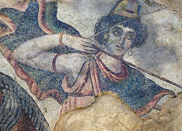 Close up of Penthesilea
