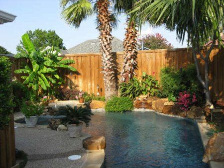 Small Pool - plants and boulders right at the pool edge