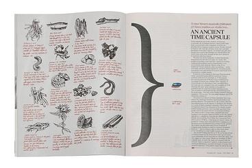 Magazine & Newspaper Design / Newspaper Supplements  Eureka