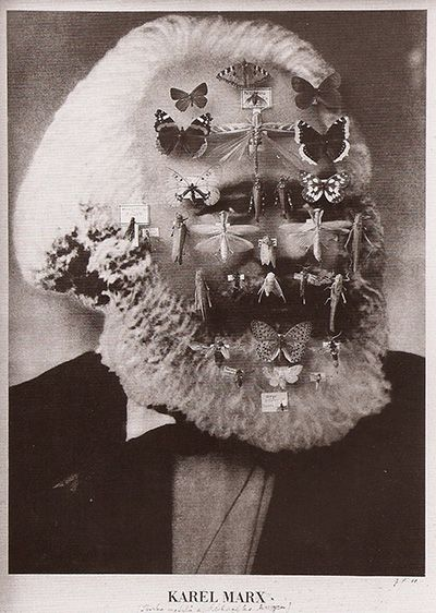 Jan Svankmajer, Karl Marx as a Collection of Butterflies