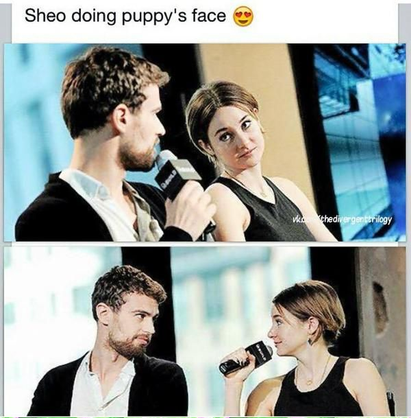 Sheo does puppy faces.