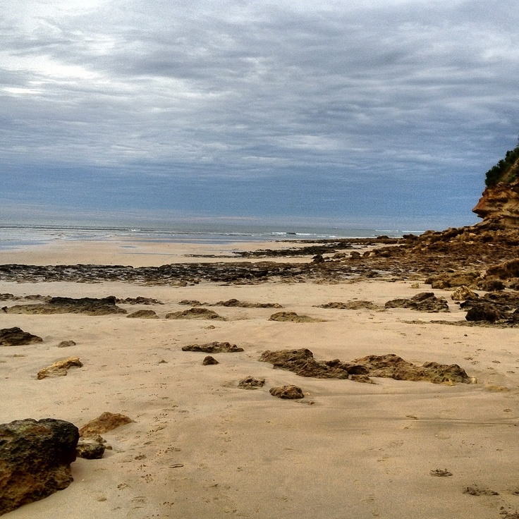 Morning walk, Torquay, Australia
