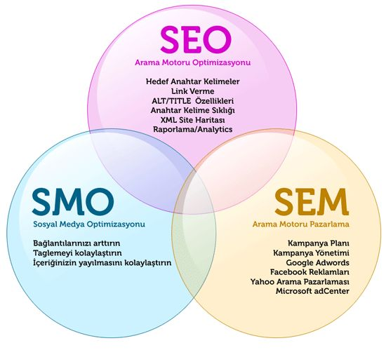 Global SEO Hub is the best SEO Company India that provides all SEO and SMO services and these are directly proportional to the ranking of your business website within budget.