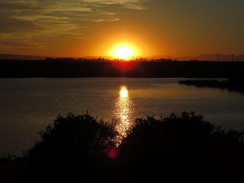 143 Sunrise from 05:00 at Kuifkopvisvanger