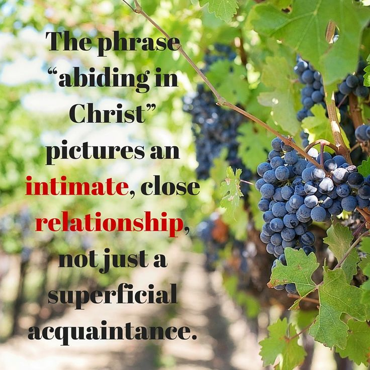 What does it mean to abide in Christ? http://www.gotquestions.org/abide-in-Christ.html