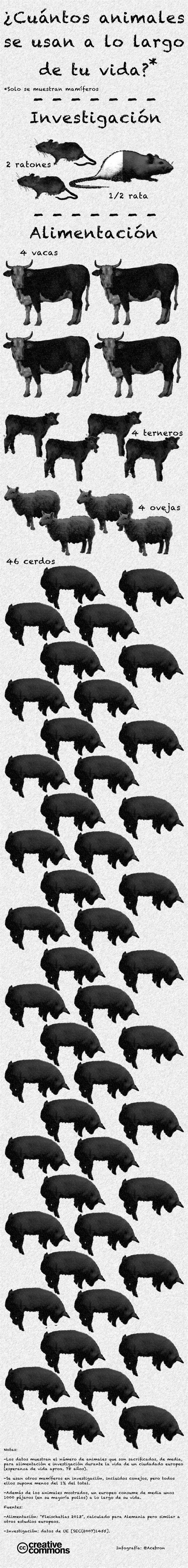 ¿Cuántos animales se usan a lo largo de tu vida en alimentación e investigación? - Naukas