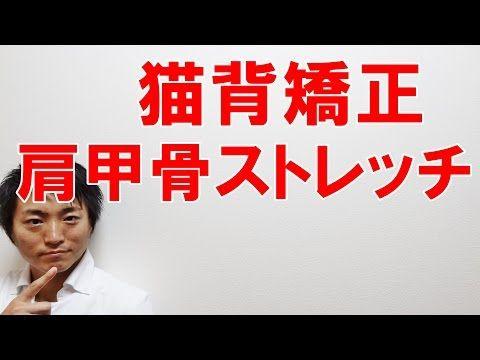 巻き肩を矯正する肩甲骨ストレッチ | 和歌山市廣井整体院