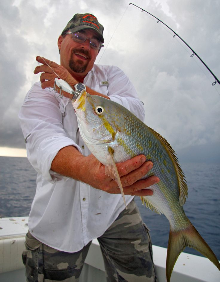 Big game yellowtail fishing in the keys pinterest big for Snapper fish florida