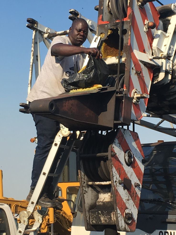 Bee Removal in Johannesburg , Removed bees at Del goal North shaft  crane