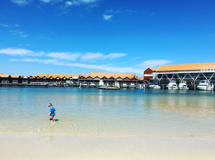 A perfect day with my little dude at the beach at Hillary's Boat Harbour. One of our favourites for young families!