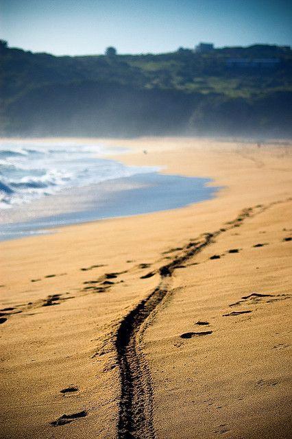 Playa de Tunquén (Chile)