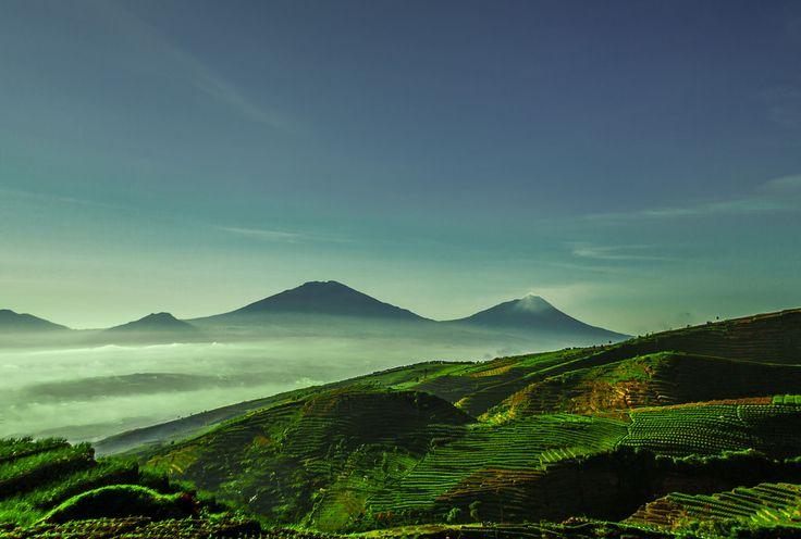 Gunung | Sebutkan 5 Gunung Tertinggi di Indonesia