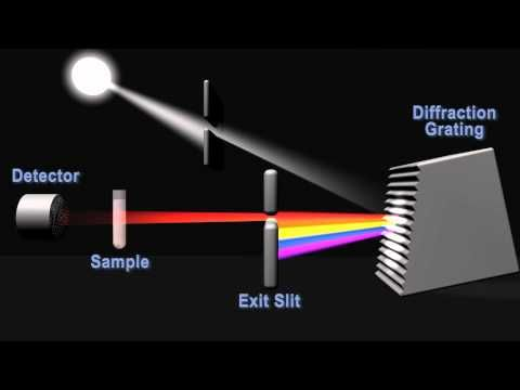 How does a spectrophotometer work?  NC BioNetwork