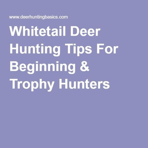 Whitetail Deer Hunting Tips For Beginning & Trophy Hunters