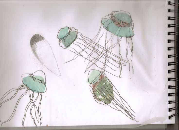 collage of jellyfish with tracing paper overlay. I used pen on the overlay to add detail to the jelly fish. Abstract