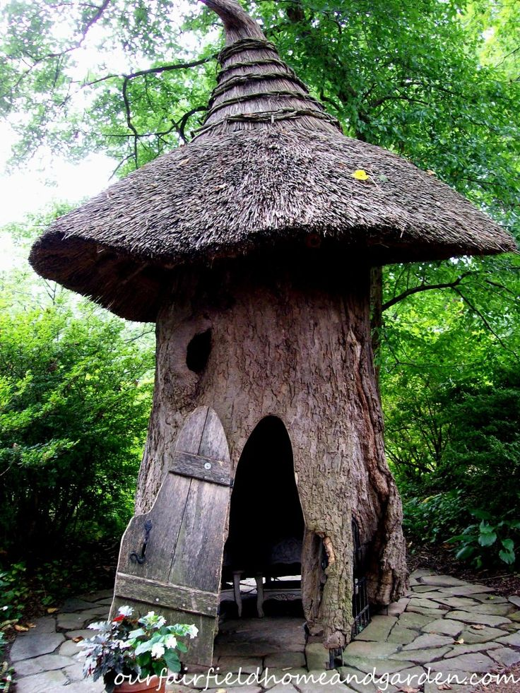 81 Best Tree Stump Ideas Images On Pinterest