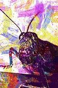 """New artwork for sale! - """" Lobster Grasshopper Macro Insect  by PixBreak Art """" - http://ift.tt/2v7i1EF"""