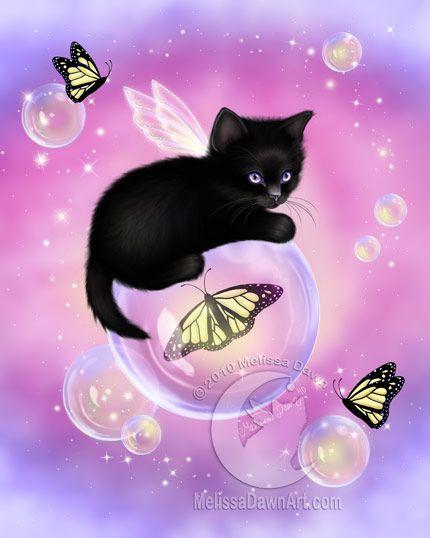 Little Kitty Faeiry