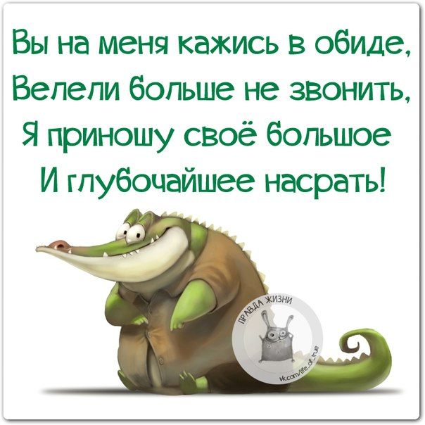 Публикация: Смешные фразки для хорошего настроения :) | Сообщество «Состояние души»