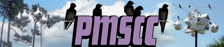 Attracting Purple Martins