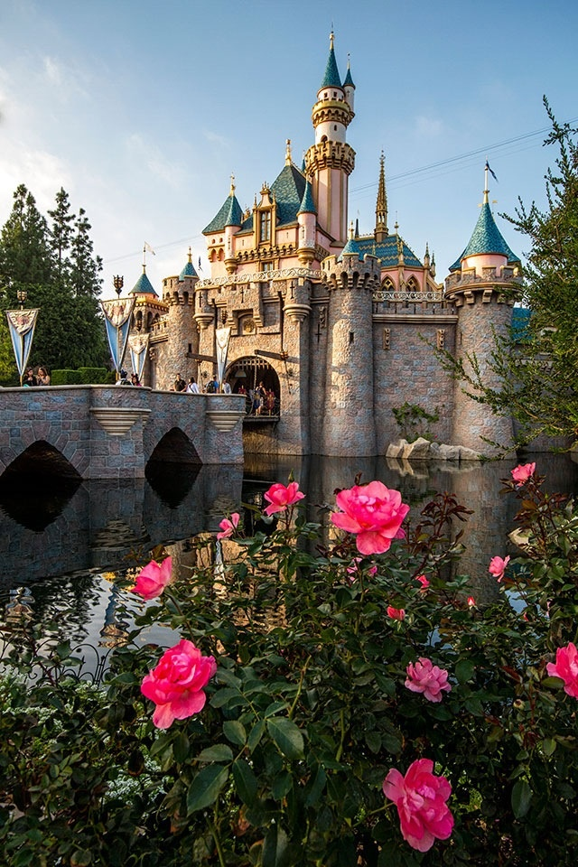 Sleeping Beauty Castle <3