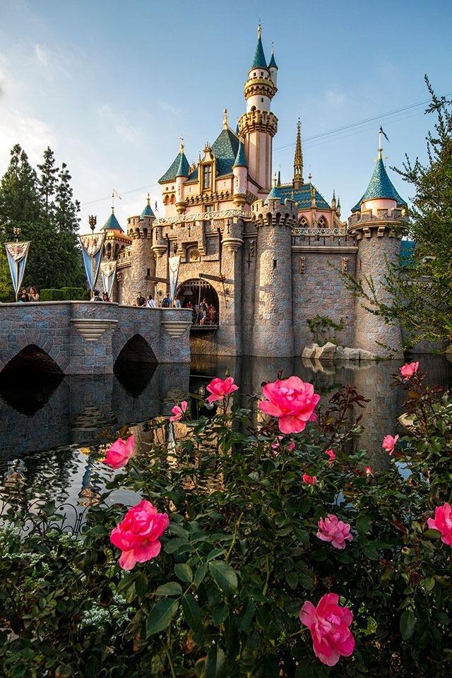 Sleeping Beauty Castle <3