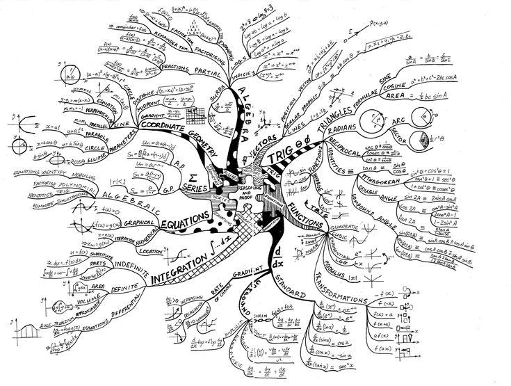 math tree #mattamatica