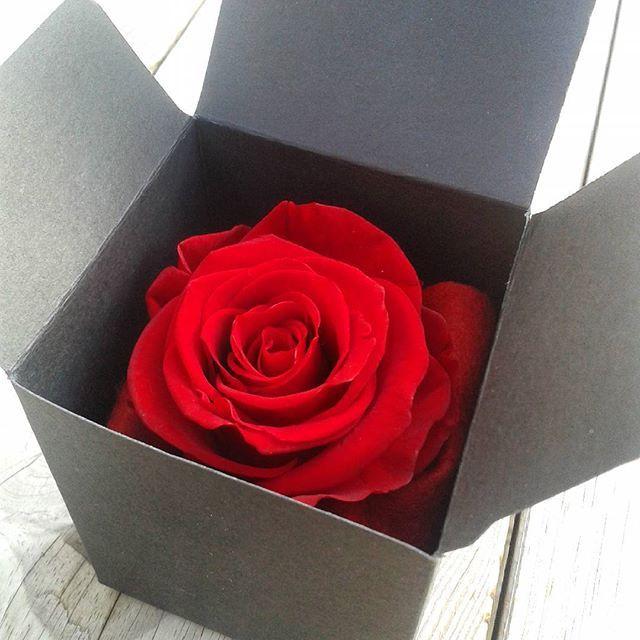 Messieurs, envie de faire livrer une rose à votre bien-aimée ? En savoir plus sur http://www.artifleurs-fleurs-artificielles.com/pages/page.html#22UROEhoSszwjumb.99