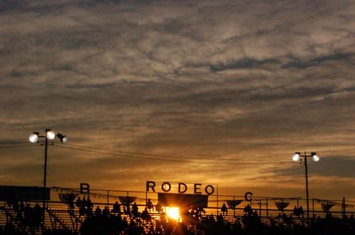 Rodeo.