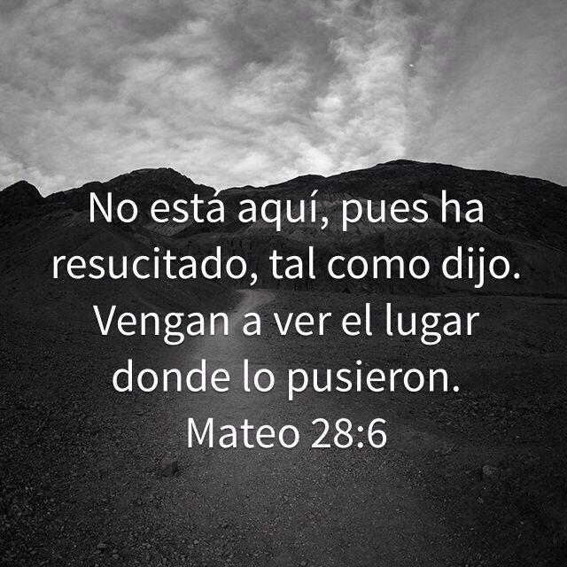 """«El ángel dijo a las mujeres: —No tengan miedo; sé que ustedes buscan a Jesús, el que fue crucificado. No está aquí, pues ha resucitado, tal como dijo. Vengan a ver el lugar donde lo pusieron. Luego vayan pronto a decirles a sus discípulos: """"Él se ha levantado de entre los muertos y va delante de ustedes a Galilea. Allí lo verán."""" Ahora ya lo saben.» Mateo 28:5-7 NVI"""