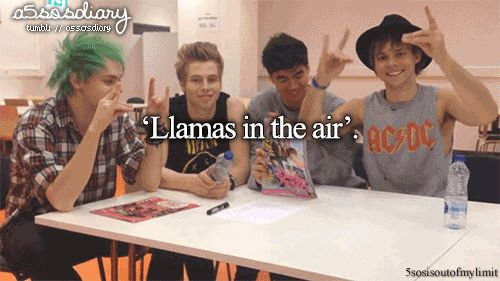 """Anytime I see someone in a 5SOS tshirt (which is rare) I say """"Hey, I like your shirt!!"""" And do a llama, but no one has ever responded back with a llama and I feel like I look like and idiot XD"""