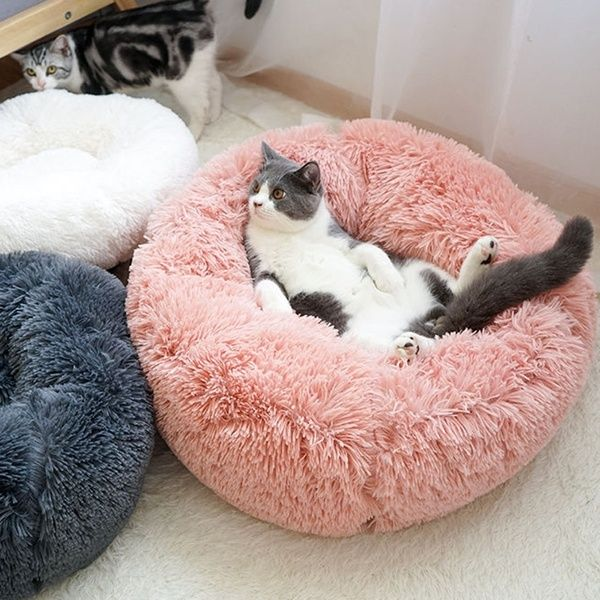 Pet Sleep Blanket Pet Cat Soft Bed Wish Plush Pet Bed Dog Pet Beds Dog Beds For Small Dogs