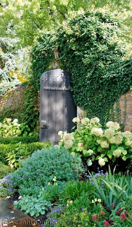 Beautiful door and planting