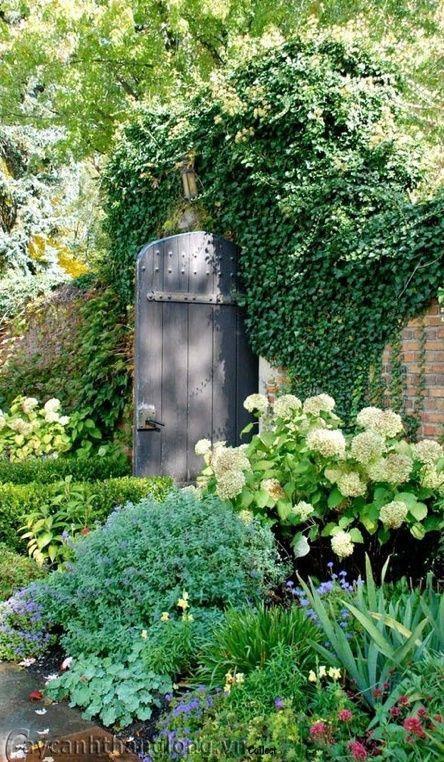 Beautiful door and planting