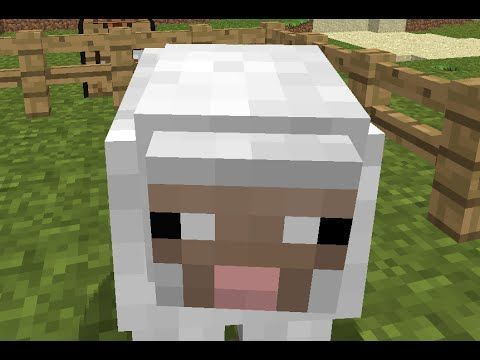 Minecraft #2 - Ugly looking sheep in the amazonian pigforest!