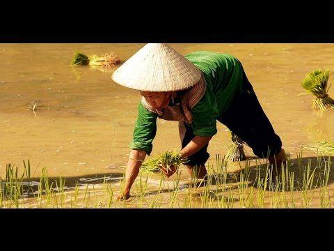Podróże Marzeń - Wietnam