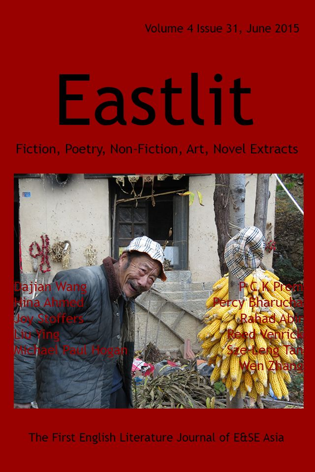 Poetry Fiction Art 38 best Creative Writing