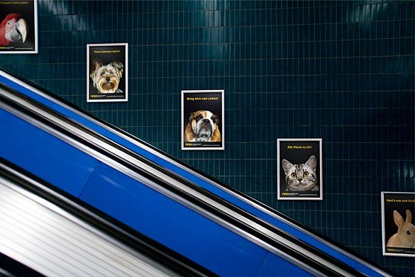 Keyvisuals für Posterwerbung in U-Bahnhöfen